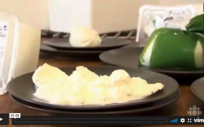 Burrata: a cheese with a good taste … of butter