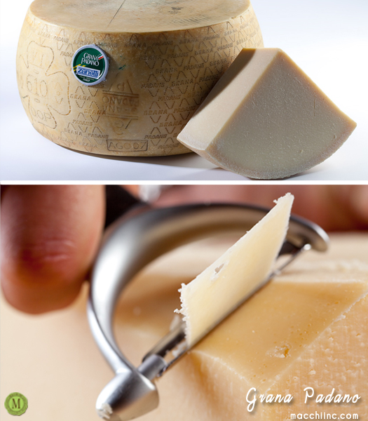 All you need to know about Grana Padano & Some Tips and Tricks